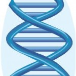 DNA Genealogy Research