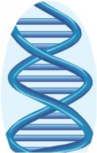 Serendiptious Genetic Genealogy DNA Match