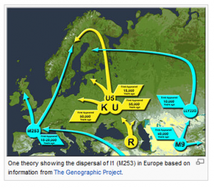 Wikipedia Haplogroup I1 - SNP M253
